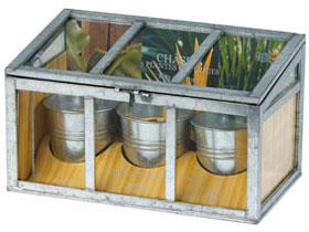 Invernadero de plantas exoticas